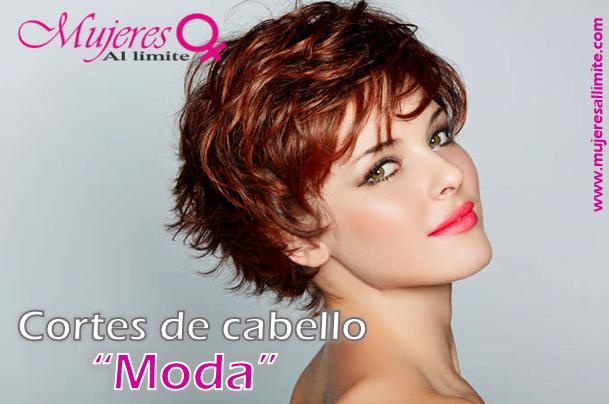 La loción bifásico con la queratina para los cabellos la reconstitución y el brillo